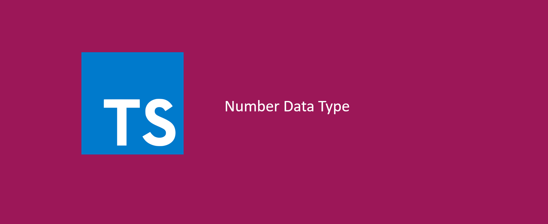 Type Number Data Type